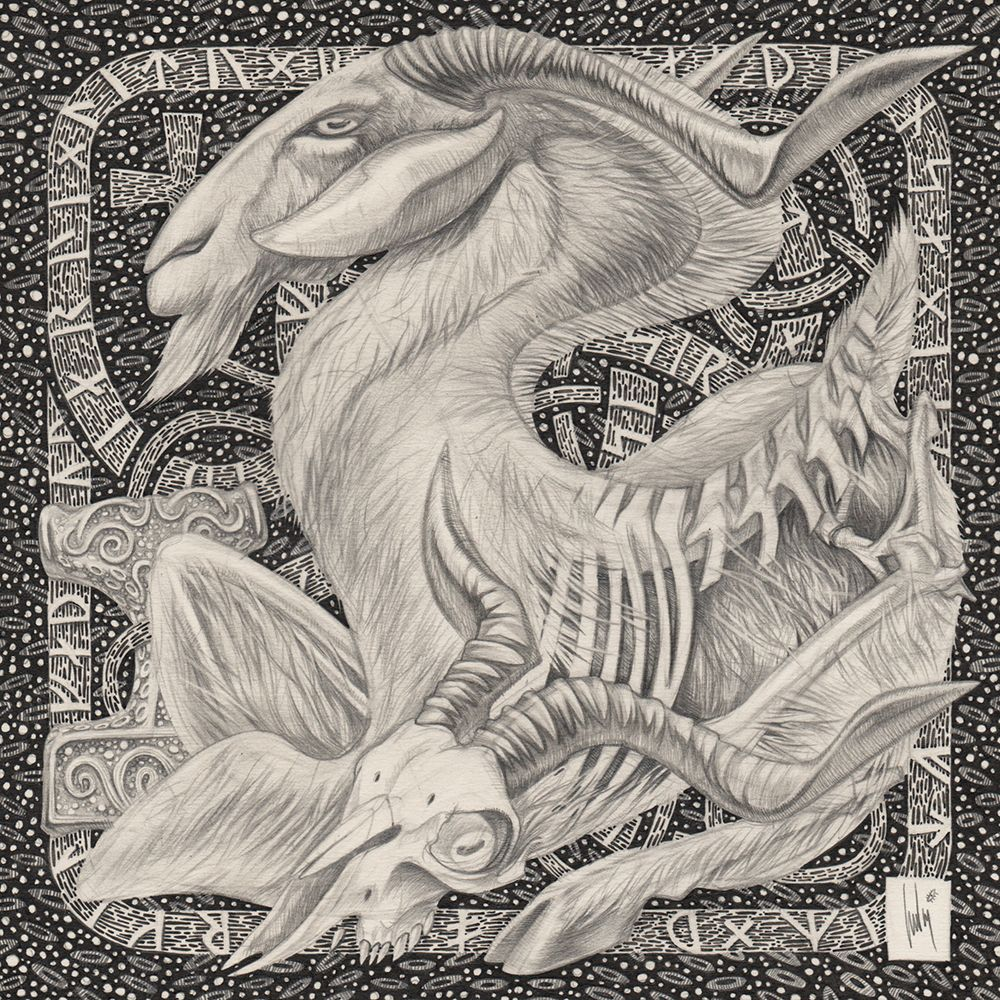 Morning rebirth process of the goats of the god Thor