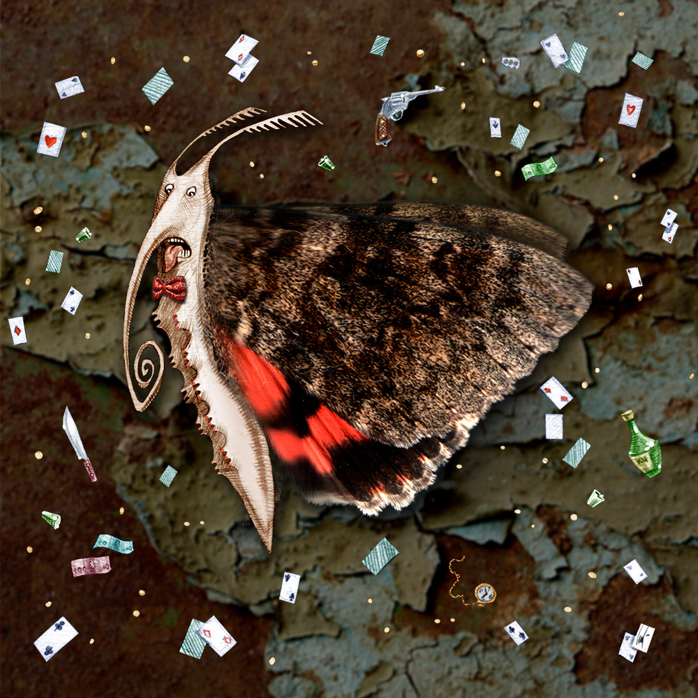 Butterflies fight their wings during a party