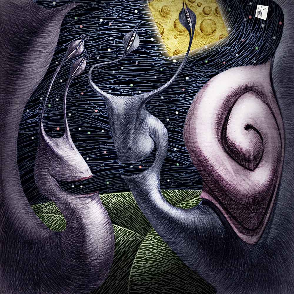 Snails in love under a square moon